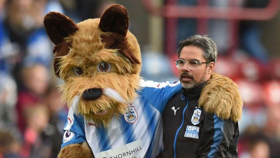 Huddersfield (Terriers)